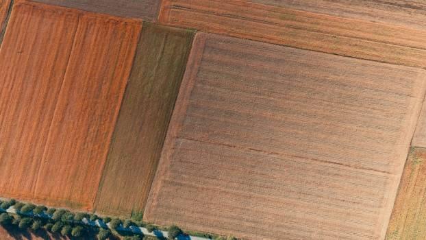 Parquet Texture Pattern Free Photo