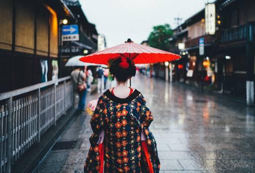 Parasol Umbrella Canopy Free Photo