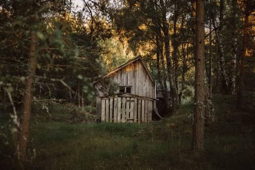 Barn Farm building Building #367714