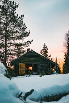 Snow Winter Resort #368225