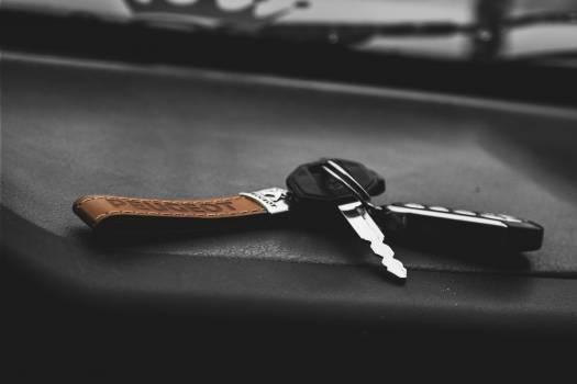 Stainless Steel Car Keys Free Photo