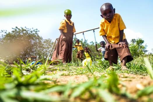Farmer Person Grass Free Photo