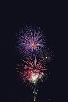 Firework Explosive Fireworks #369386