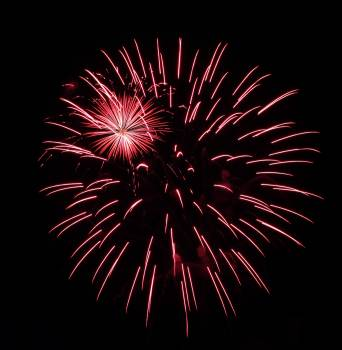 Firework Explosive Fireworks #372325