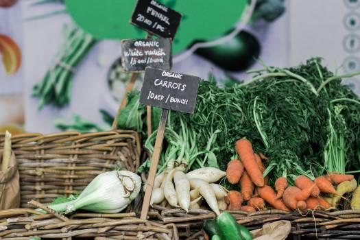 Vegetable Onion Food #372868