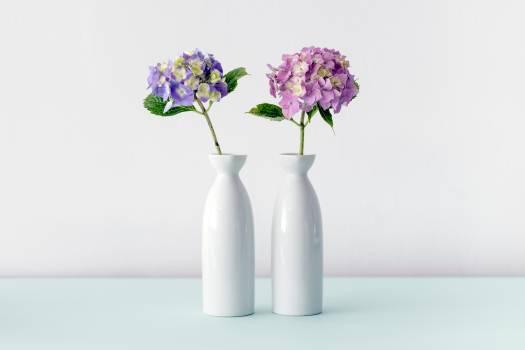 Vase Container Jar #372900