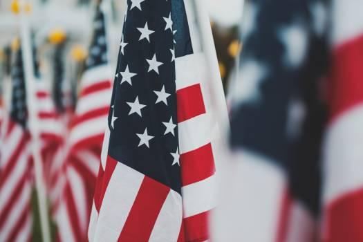 Flag Emblem Patriotic Free Photo