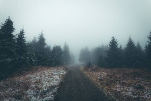 Ascent Slope Landscape Free Photo