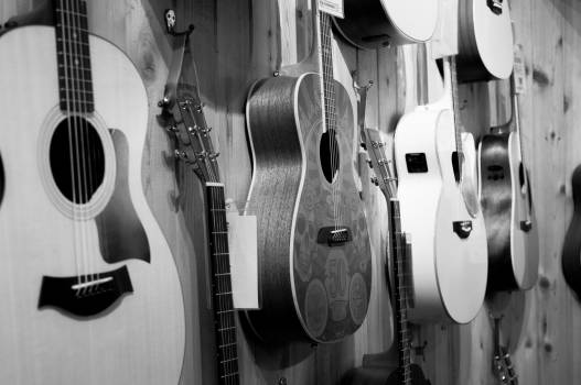 Gray Scale Photo of Acoustic Guitars #37414