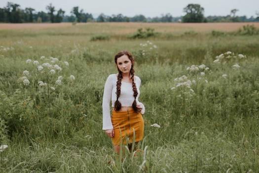 Grass Meadow Field Free Photo