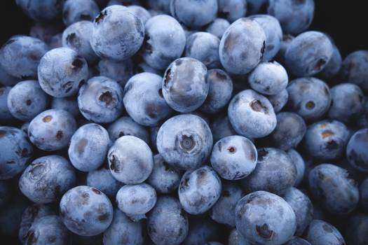 Fruits healthy closeup blueberries #37530