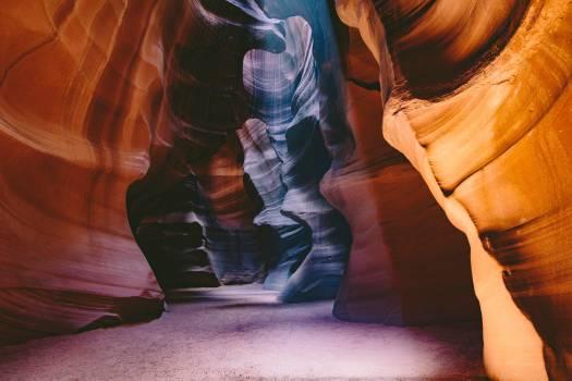 Canyon Antelope Orange Free Photo