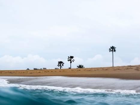 Sandbar Beach Ocean Free Photo