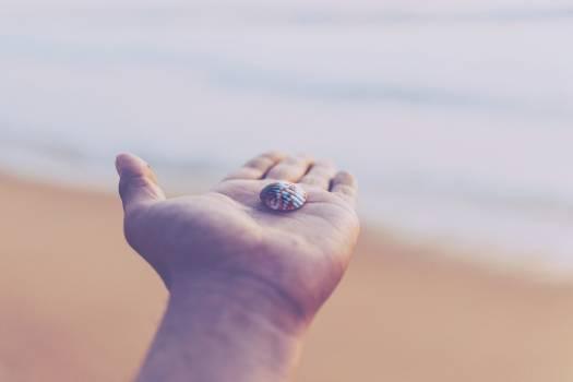 Fingernail Hand Finger #377502