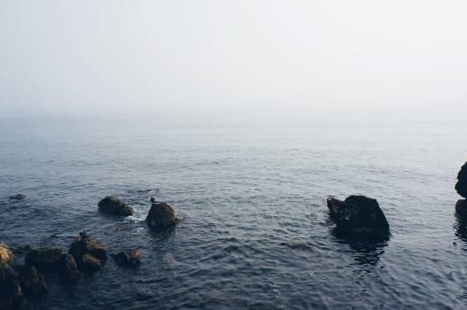 Ocean Sea Water #378196