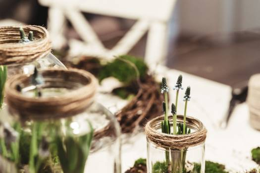 Glass Aroma Luxury Free Photo
