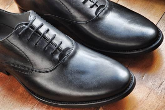 Loafer Footwear Shoe Free Photo