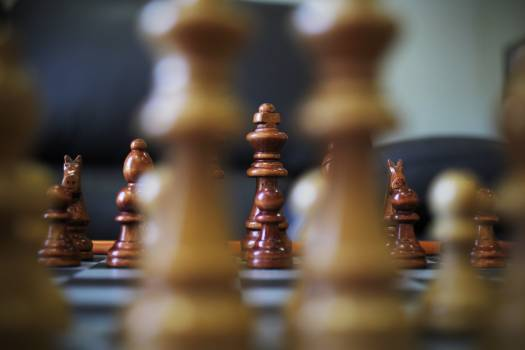 Game king horse chess Free Photo