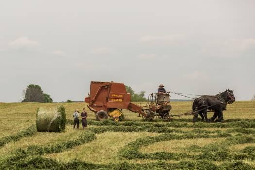 Harvester Farm machine Machine #382170