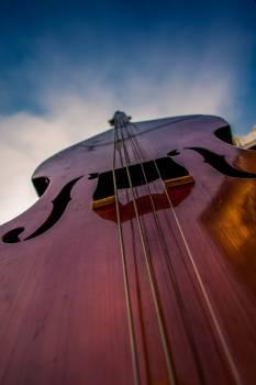 Bowed stringed instrument Stringed instrument Bass Free Photo