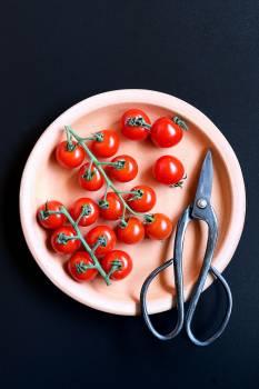 Food Tomato Fruit #383740