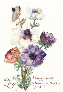 New Year's Greeting with Anemones (1897) by Sientje Mesdag-van Houten. Original from The Rijksmuseum.  Free Photo