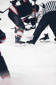 Ice hockey match on the rink #384226