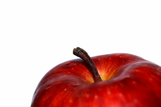 Red Apple Fruit Photography #38461