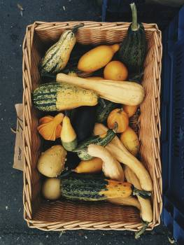 Variety of pumpkins for decoration #384778