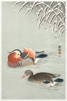 Mandarin ducks (1925 - 1936) by Ohara Koson (1877-1945). Original from The Rijksmuseum.  #385577