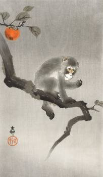 Monkey in cockatoo (1900 - 1930) by Ohara Koson (1877-1945). Original from The Rijksmuseum.  #385584