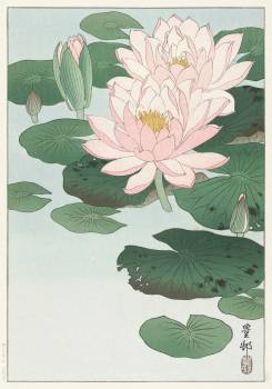 Water Lily (1920 - 1930) by Ohara Koson (1877-1945). Original from The Rijksmuseum.  Free Photo
