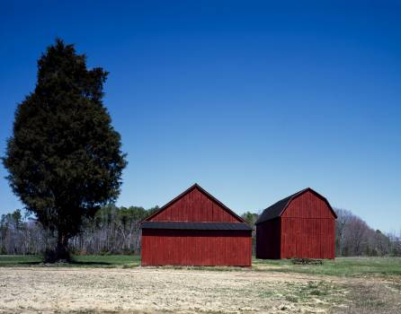 Red barns ion a tidy Amish farm in St. Mary's County, Maryland. Original image from Carol M. Highsmith's America, Library of Congress collection.  #385925