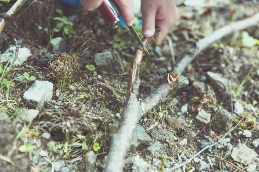 Man cutting a twig #386141
