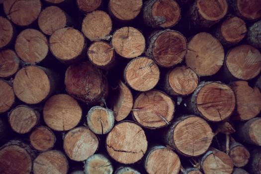 Close up of a stacked timber #386202