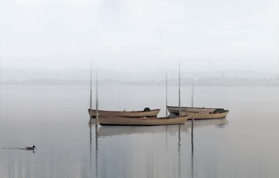 4 White Canoe on Calm Body of Water #38643