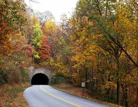 Tunnel on North Carolina's Blue Ridge Parkway. Original image from Carol M. Highsmith's America, Library of Congress collection.  #386842