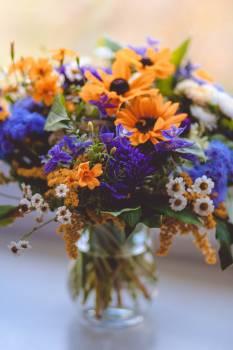 Orange Purple Green and White Flowers Decor #38725
