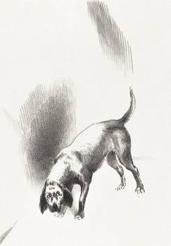 The Dog (1896) by Odilon Redon. Original from the National Gallery of Art.  Free Photo