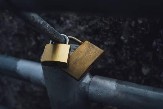 Gold padlocks on a metal fence #388187