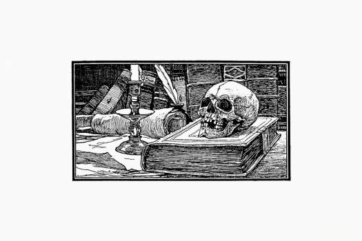Skull and books from Half A Century, 1848-1898. The Netherlands Under The Direction Of King Willem The Third And The Regency Of Queen Emma Described By The Dutch Under The Direction Of Dr. P.H. Ritter (1898). Original from the British Library.  Free Photo