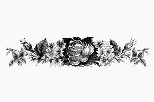 Vintage Victorian style blooming flowers engraving. Original from the British Library.  #390291
