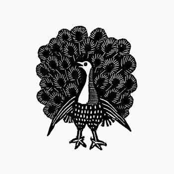 Vintage Victorian style peacock engraving. Original from the British Library.  #390308