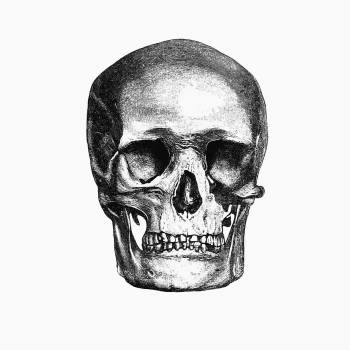 Vintage European style skull engraving from Annals of Winchcombe and Sudeley by Emma Dent (1877). Original from the British Library.  #390350