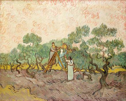 Women Picking Olives (1889) by Vincent Van Gogh. Original from the MET Museum.  Free Photo