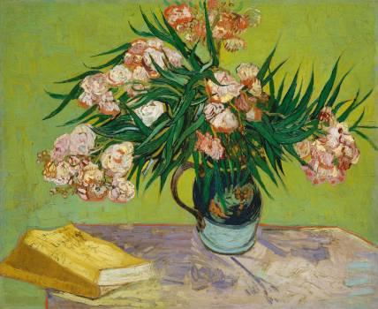 Oleanders (1888) by Vincent Van Gogh. Original from the MET Museum.  #390802