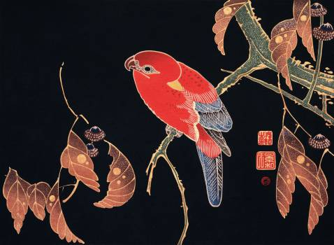 Red Parrot on the Branch of a Tree (ca. 1900) by Ito Jakuchu. Original from The MET Museum.  #390843