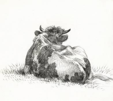 Lying cow (1822) by Jean Bernard (1775-1883). Original from The Rijksmuseum.  #391374