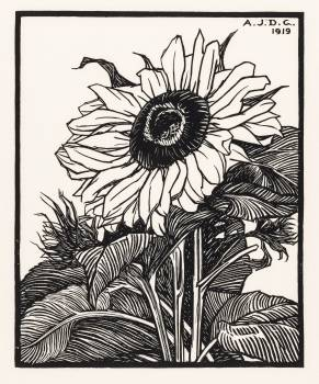 Sunflower (1919) by Julie de Graag (1877-1924). Original from The Rijksmuseum.  #391675