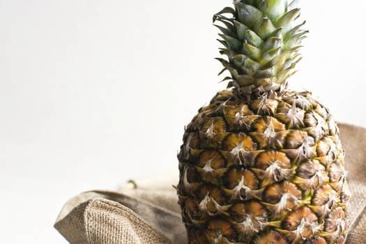 Closeup of a tropical pineapple #391776